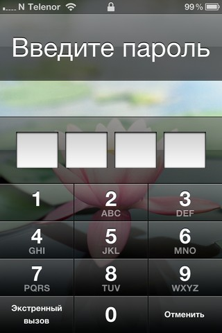 iphone pin protection