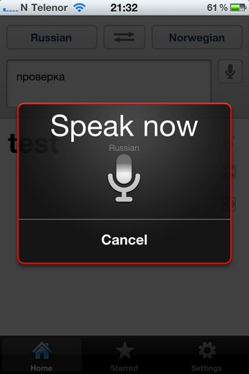 google translate voice